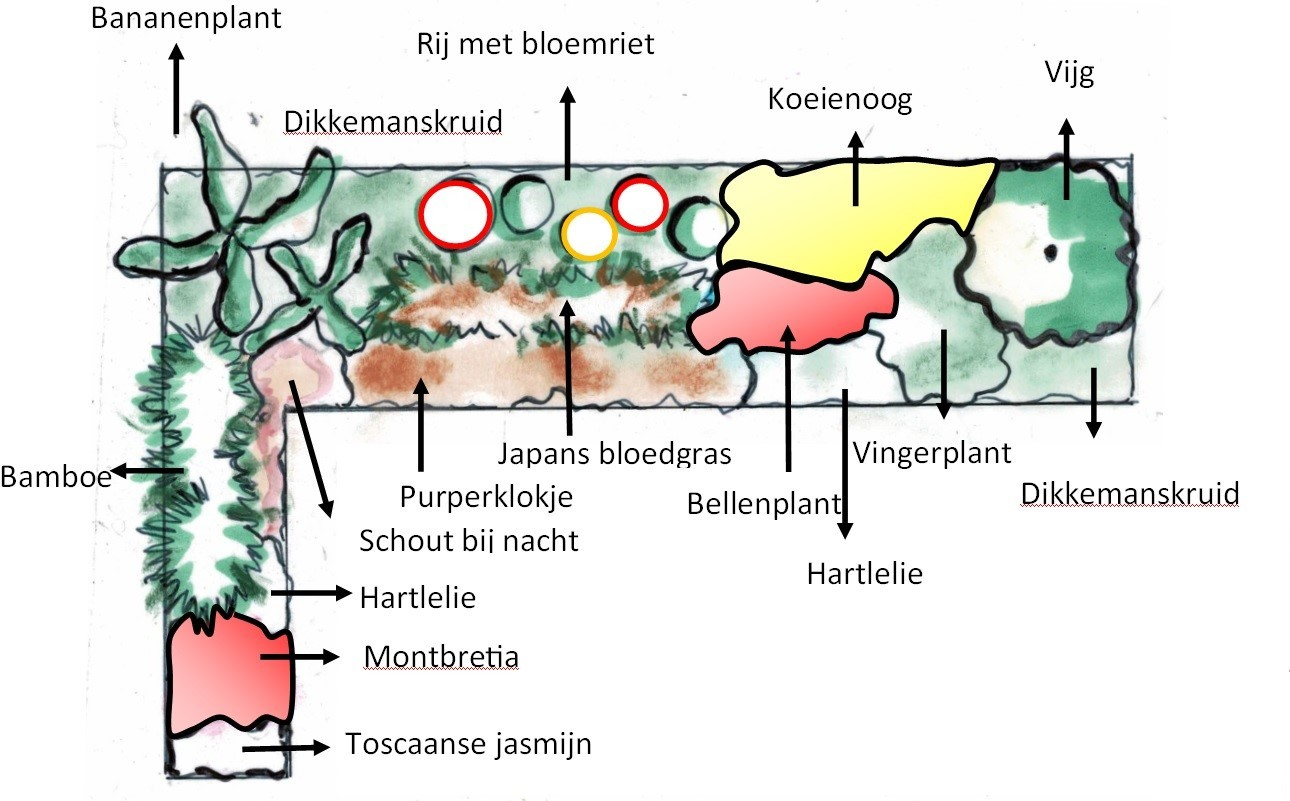 beplantingsplan