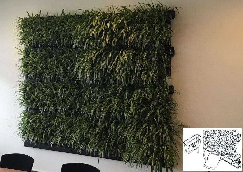 Verticale Tuin Systeem : Klassieke verticale tuin op flatgebouw blijft verbazen hetkanwel