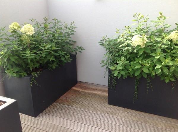 Polyester plantenbakken rechthoekig