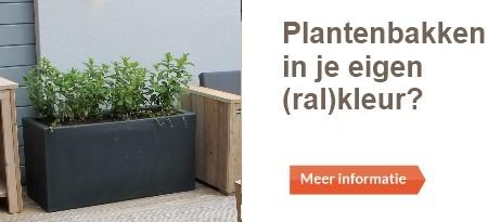 plantenbak in kleur