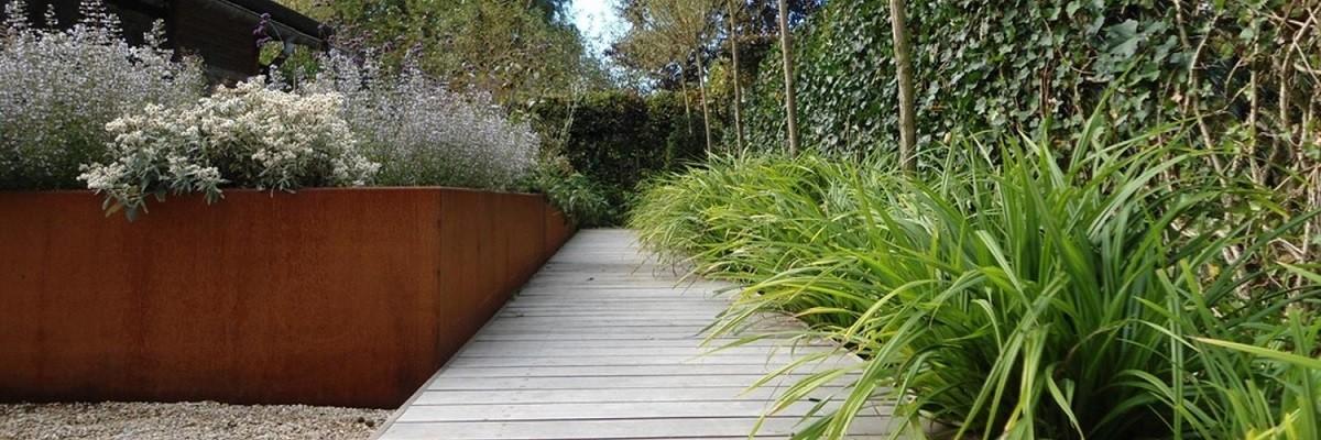 Planten Voor In De Schaduw.11 Vaste Planten Die Het Goed Doen In De Schaduw